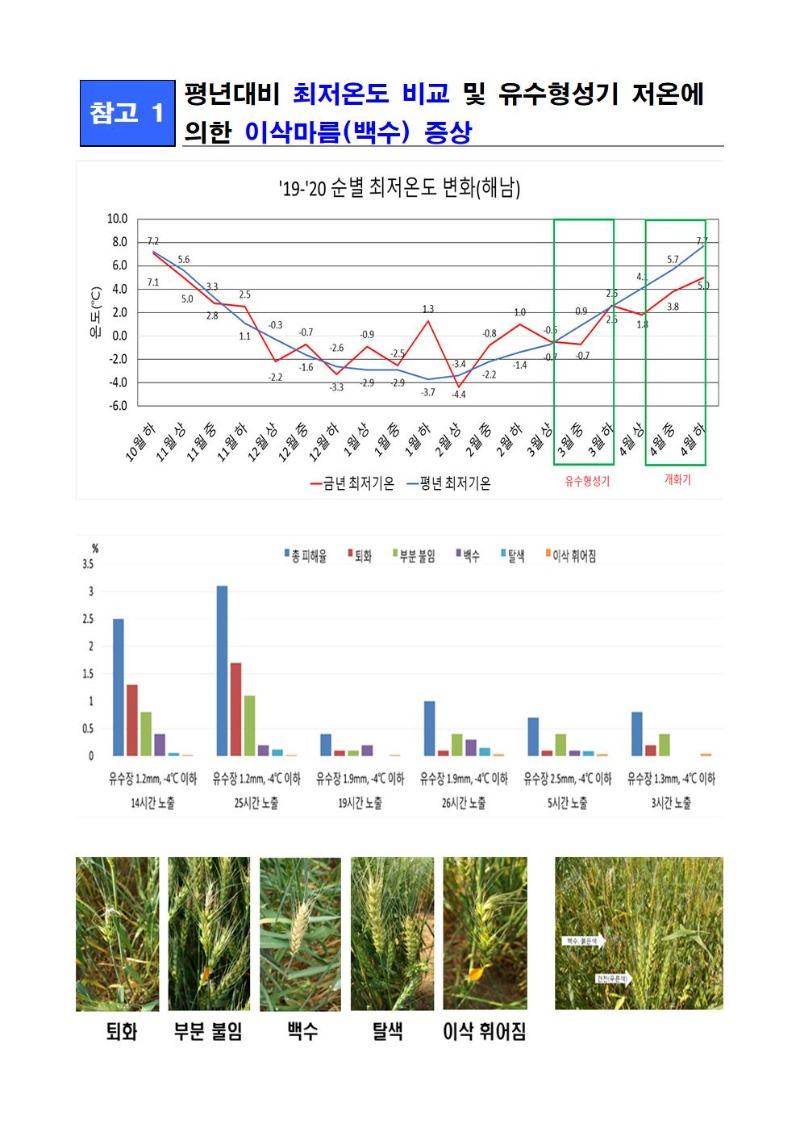 2020-47_붙임1-이상 저온에 따른 밀 생육장애 발생 안내002.jpg